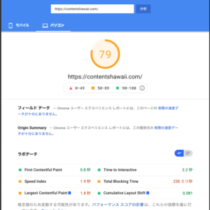 Google PageSpeed Insights Score 79