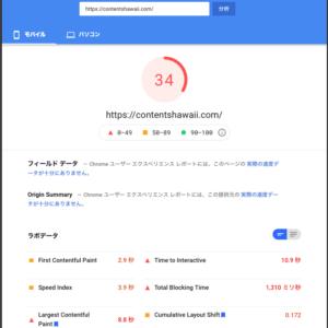 Google PageSpeed Insights Score 34