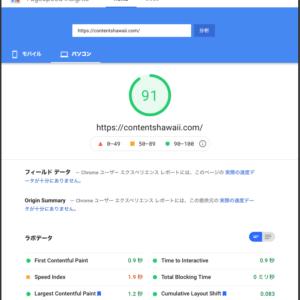 Google PageSpeed Insights Score 91