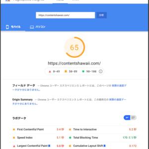 Google PageSpeed Insights Score 65